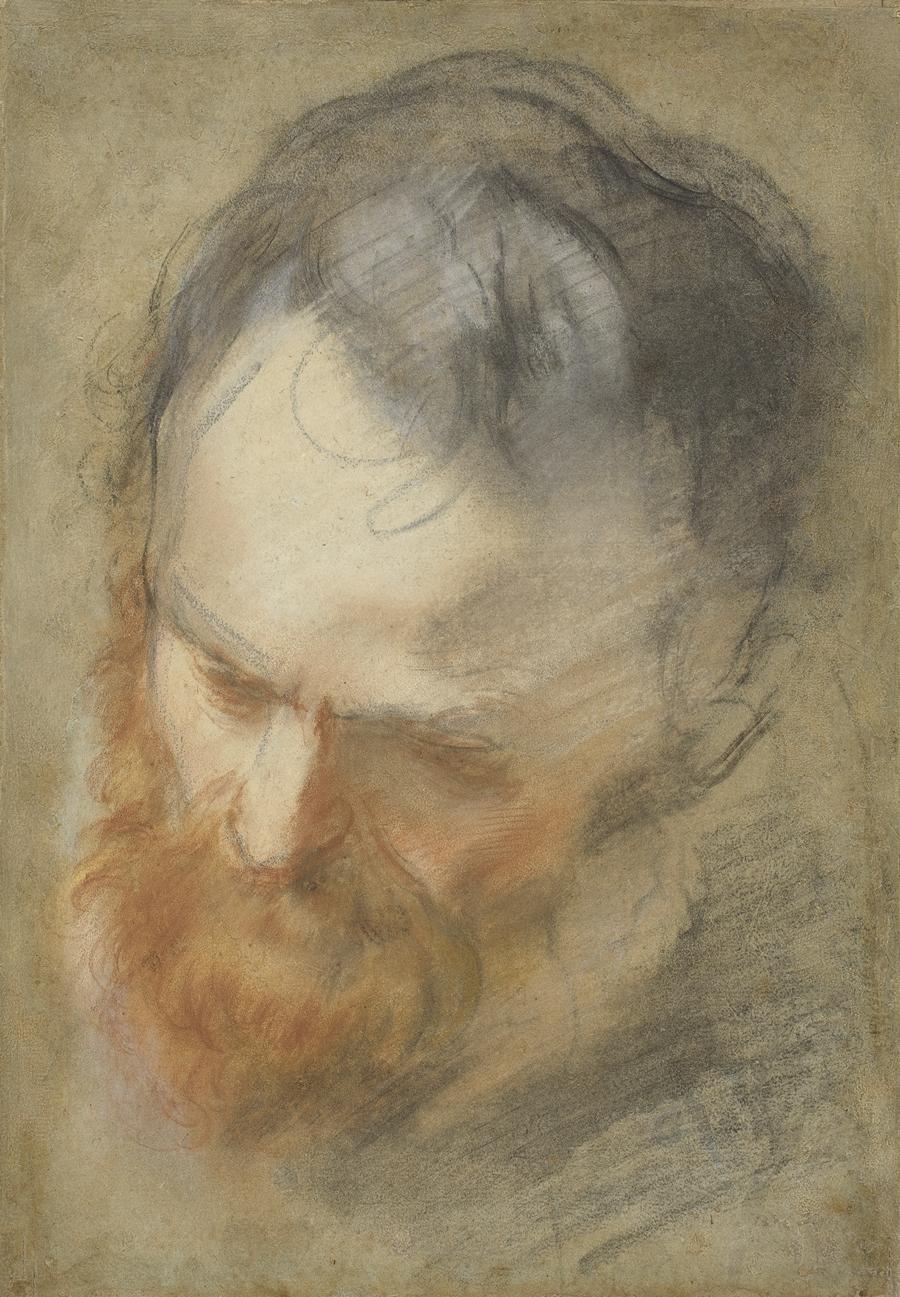Картинки по запросу head of a bearded man
